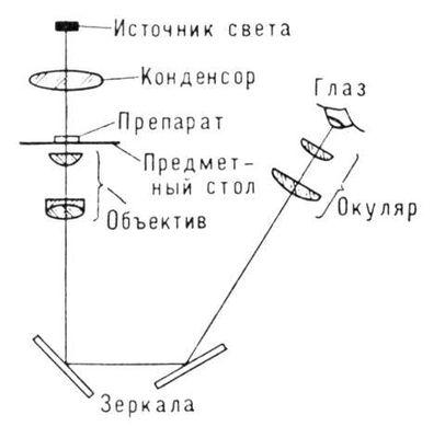 Инвертированный микроскоп